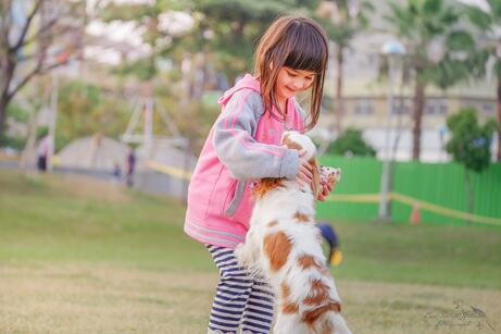 animal-child-contact-332974