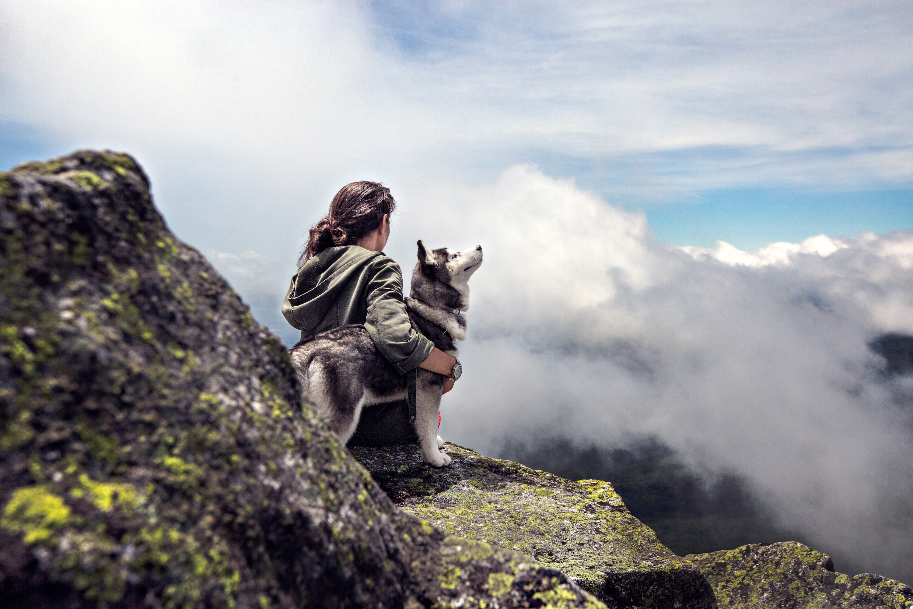 7 Items You Should Always Pack When Hiking With Your Dog