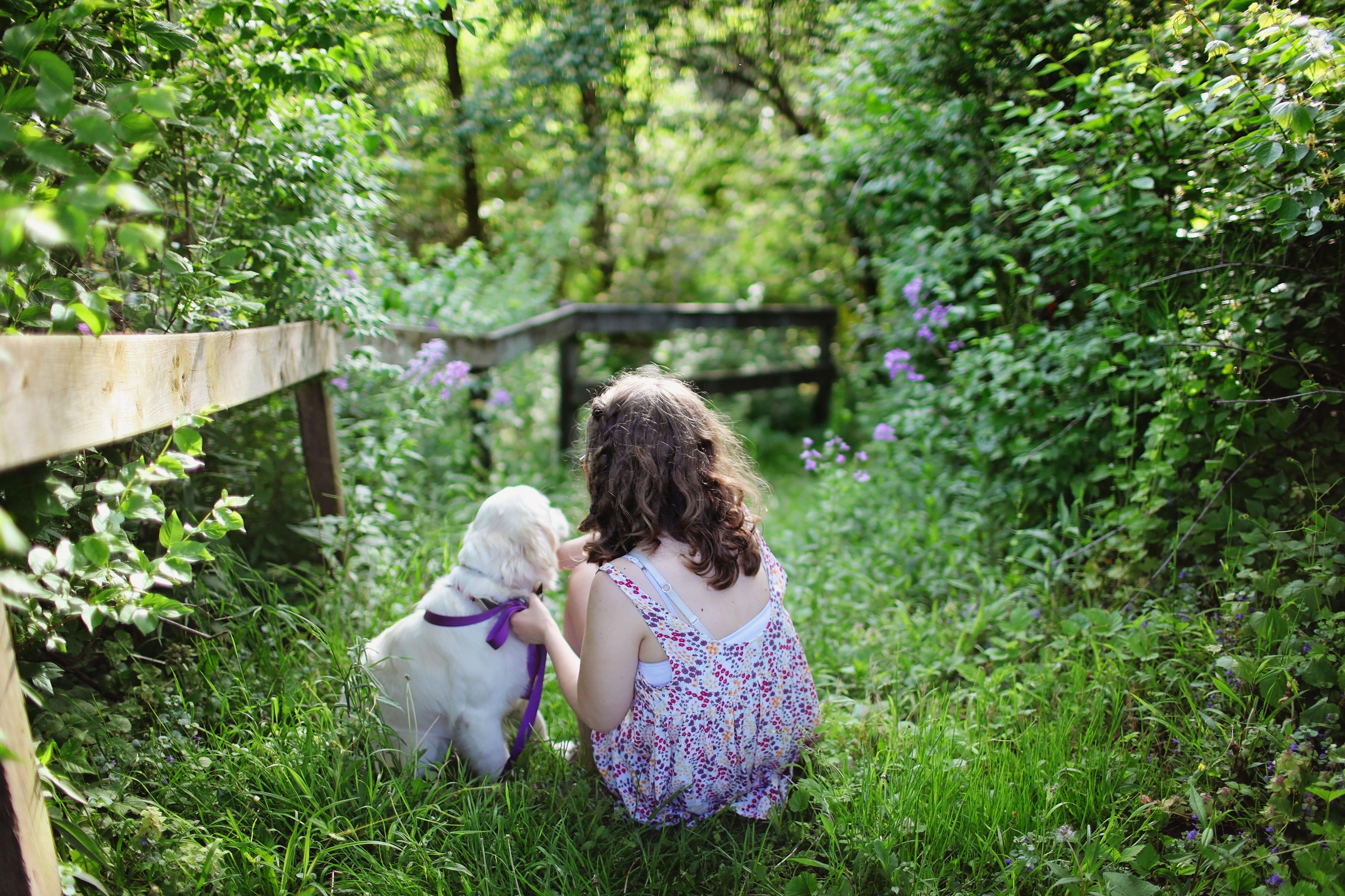 Smart Hacks for Creating a Dog-Friendly Garden